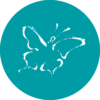 Chrysalis butterfly icon
